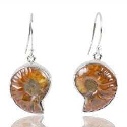 Medagasker Ammonite Gemstone 925 Streling Sliver Dangle Earring